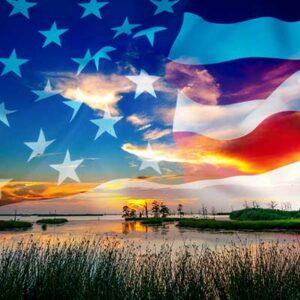 American flag waving over swamp at dusk