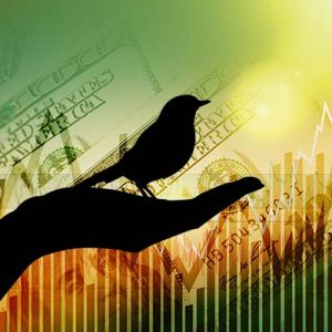 silhouette of hand holding a bird placed in front of a yellow/green background of graphs increasing and U.S. hundred dollar bills overlaid on top and faded