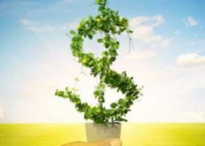dollar sign growing out of a pot like a plant with a hand holding the pot against a sunny sky background