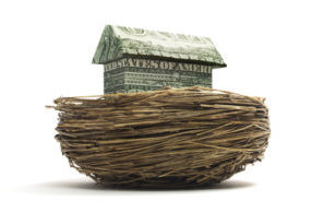 Origami cash house in a nest.