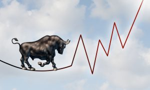 Bull market risk financial concept with bull walking on tight rope