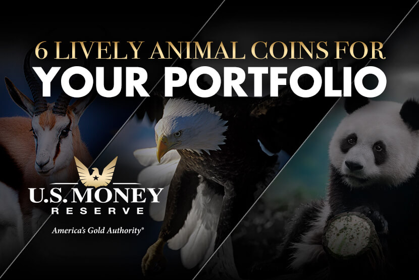 Springbok, eagle, and panda as examples of animals on coins