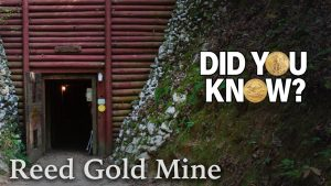 Reed Gold Mine - Did You Know?