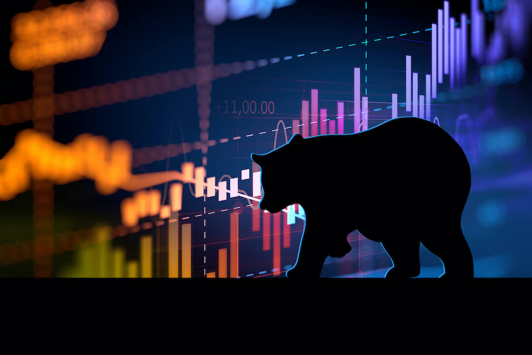 Bear Walking in front of Chart