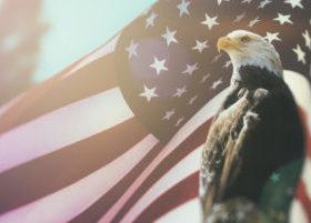 American Flag Behind Eagle