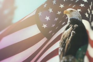 American Flag Behind Eagle
