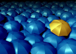 Gold Umbrella In the Midst of Blue Umbrellas